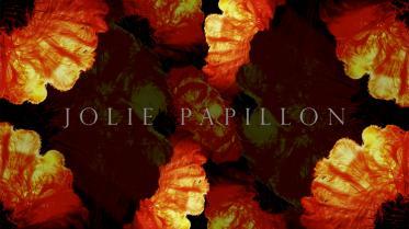 JOLIE-PAPILLON-•-#1-•