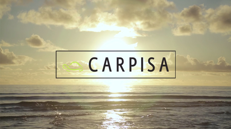 Carpisa • Summer Collection 2016